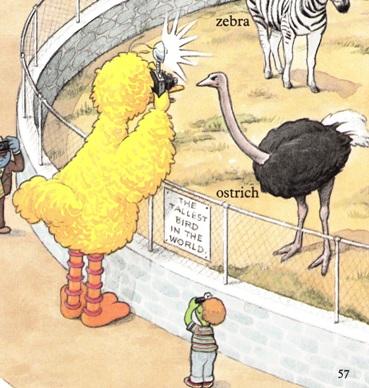 Sesame Street Word Book - Big Bird